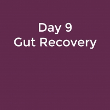 Gut Recovery