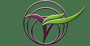 The Vegan Seed